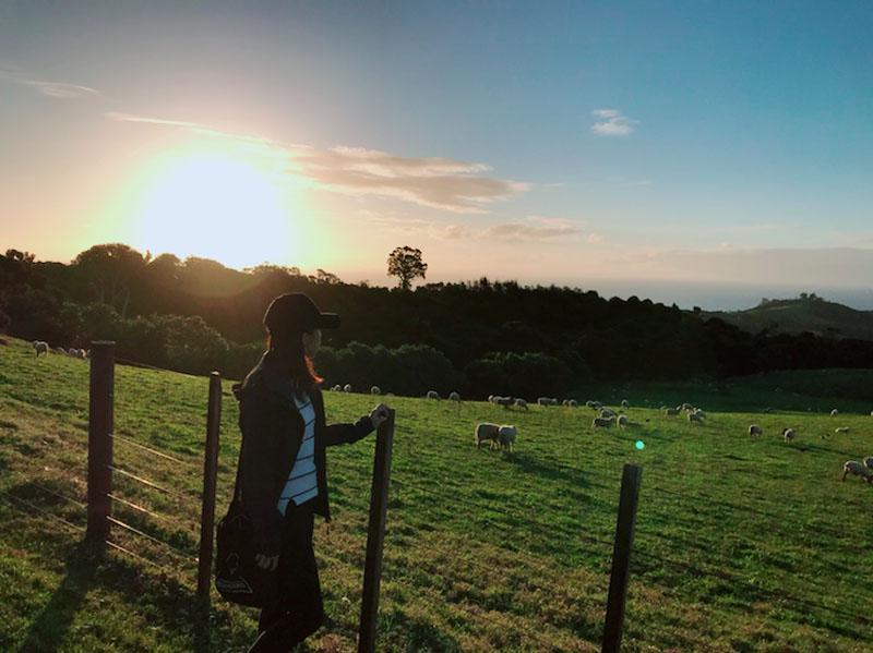 【紐西蘭NZ生活】與台灣時差改變,夏令日光節約時間