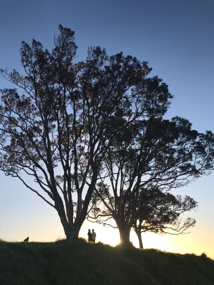 【紐西蘭NZ工作】工作簽證申請條件&事前準備