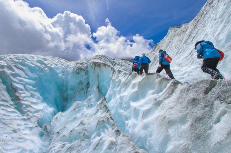 Franz Josef Glacier & Fox Glacier