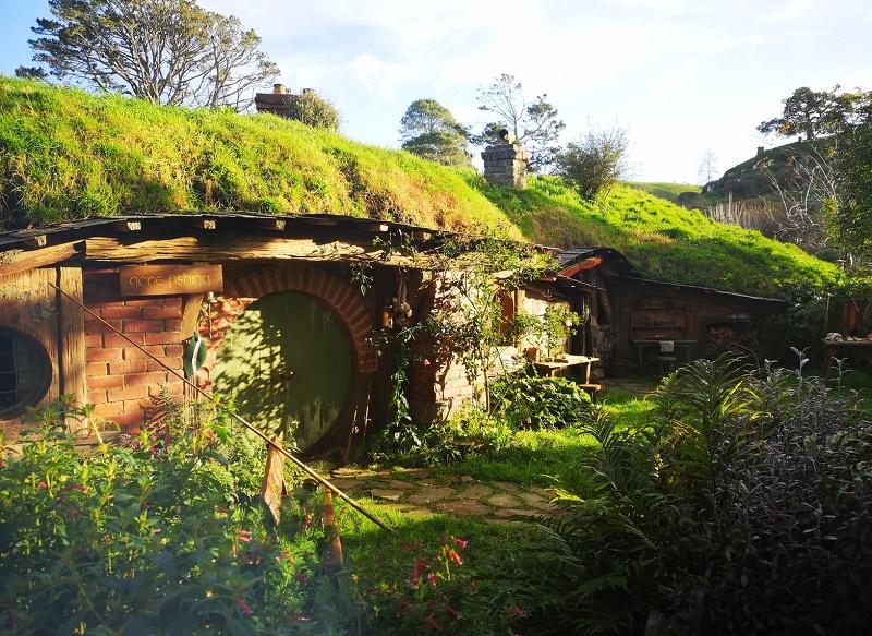 【紐西蘭NZ活動】魔戒哈比村&藍光蟲洞,北島兩大必去景點