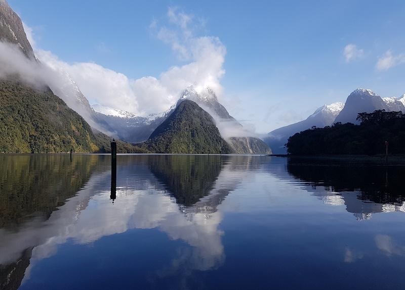【紐西蘭NZ旅遊】米佛峽灣Milford Sound遊船看企鵝海豚