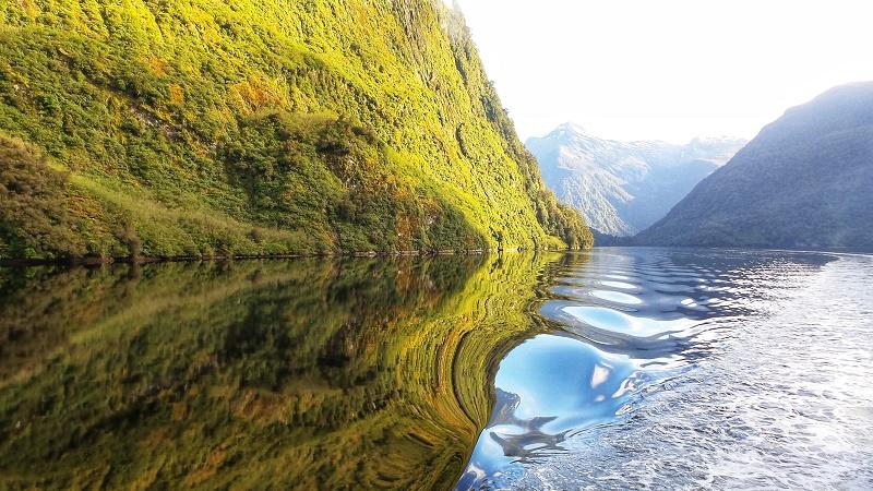 【紐西蘭NZ旅遊】5個必去神奇峽灣Doubtful Sound過夜巡遊的理由